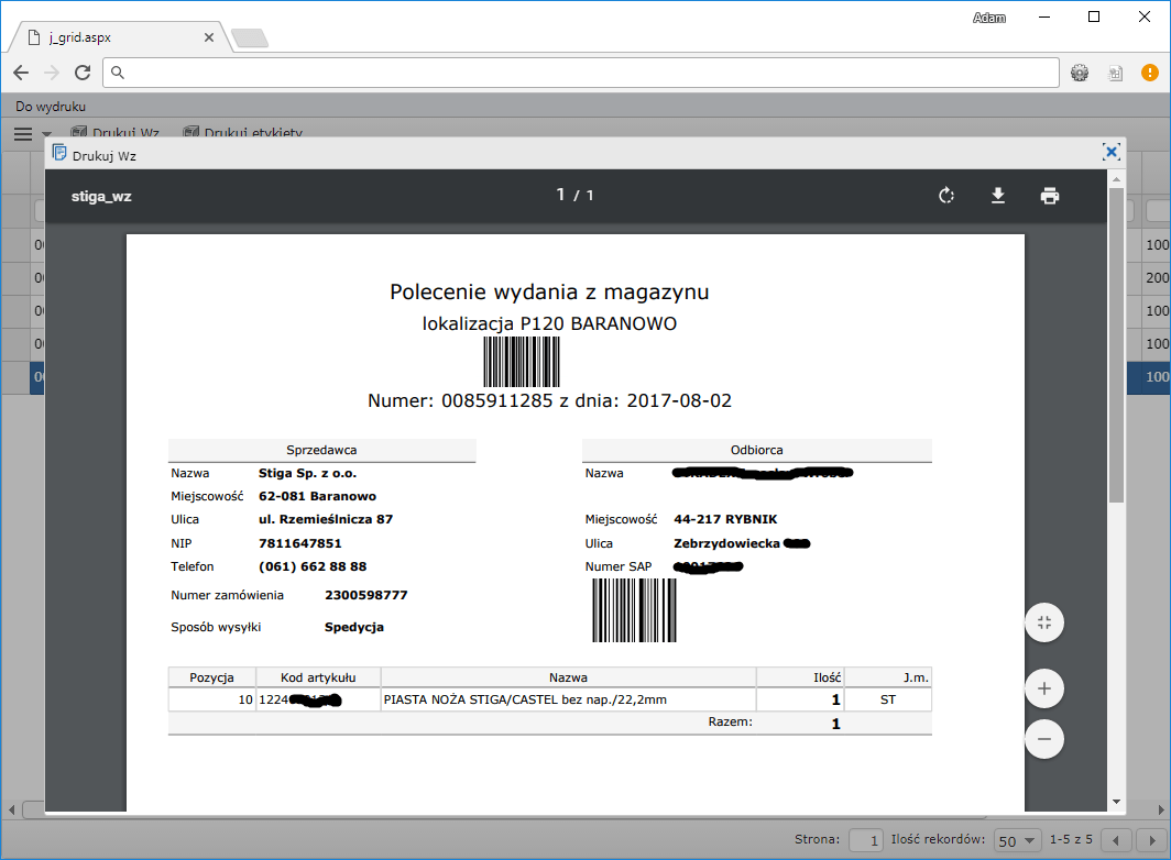 raporty podgląd pdf